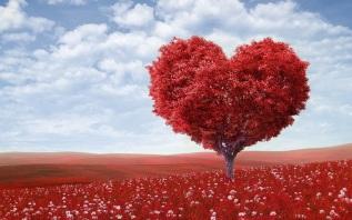 Reflection: The Greatest Commandment –Love